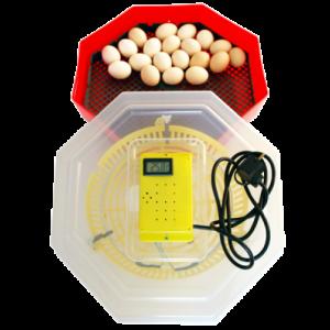 Incubator electric 5T
