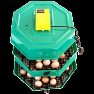 Incubator 5x2 DT cu extensie 82/174 oua